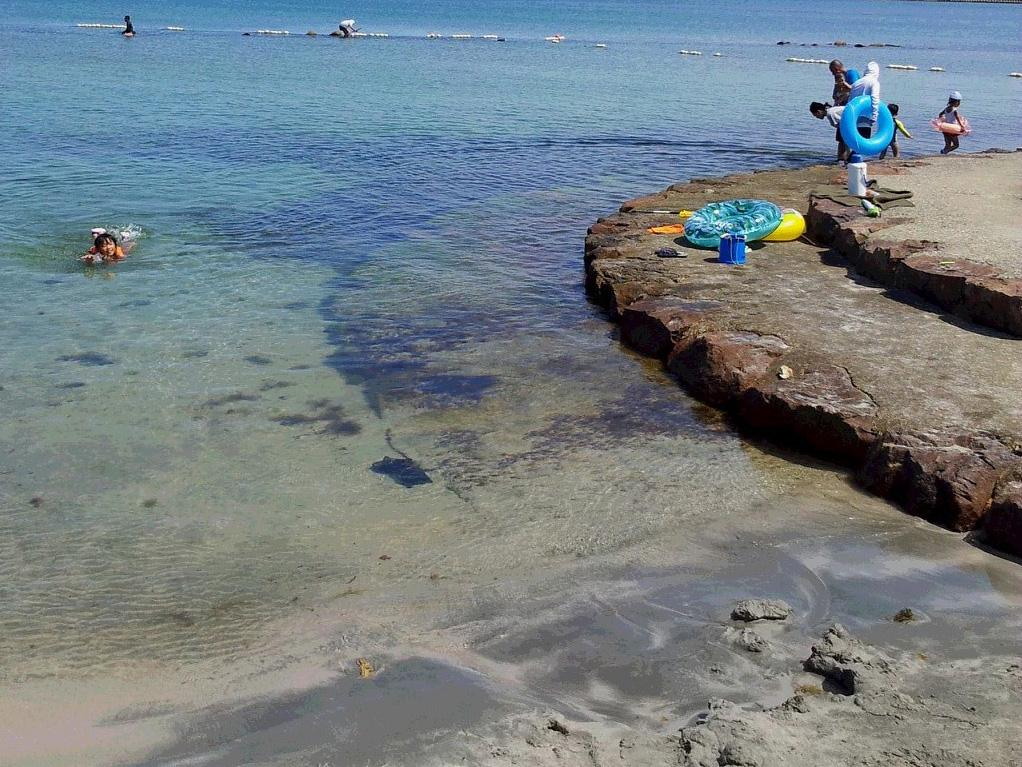 遠浅の八ヶ崎海水浴場